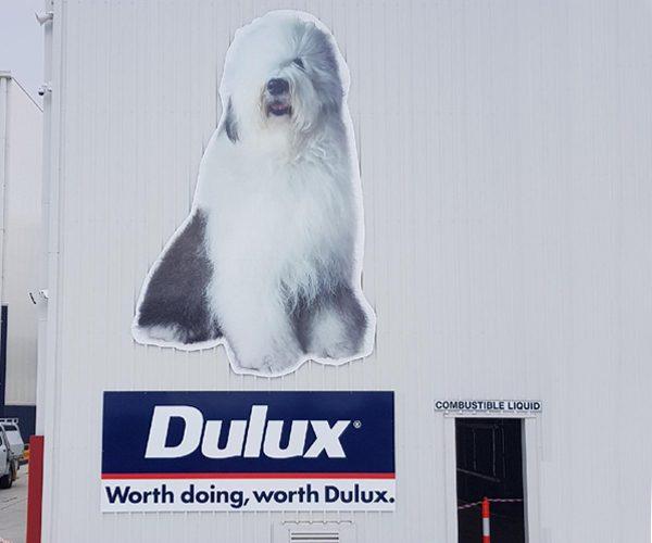 FM_dulux_dog